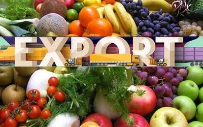export_IA