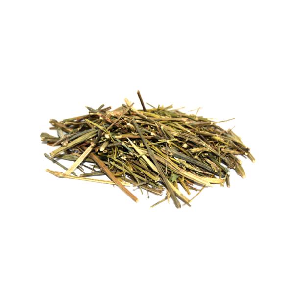 Chirayta (Swertia chirayita)